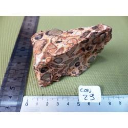 Conglomérat en pierre brute de 178 gr