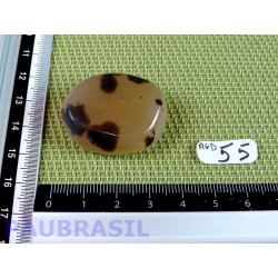 Agate Naturelle Dendrite Q Extra en tranche plate 20 g