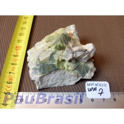 Wavellite 89gr Arkansas USA .