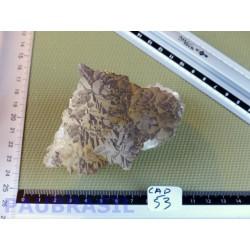 CALCITE JAUNE NOIRE du Chihuahua pierre brute RARE 330g