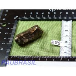 Agate Turitelle - Turritellas Jaspis 28gr