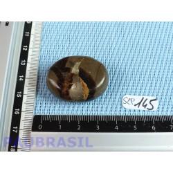 Septaria en tranche polie 22g