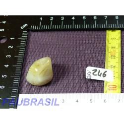 Quartz à inclusions de rutile du Minas Gerais Brésil 9gr
