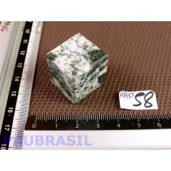 Cube poli en Agate arborisée - agate arbre Q Extra 26g 22mm
