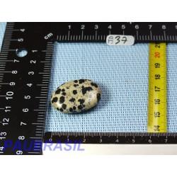 Jaspe Dalmatien Lamparci en mini pierre plate 13gr