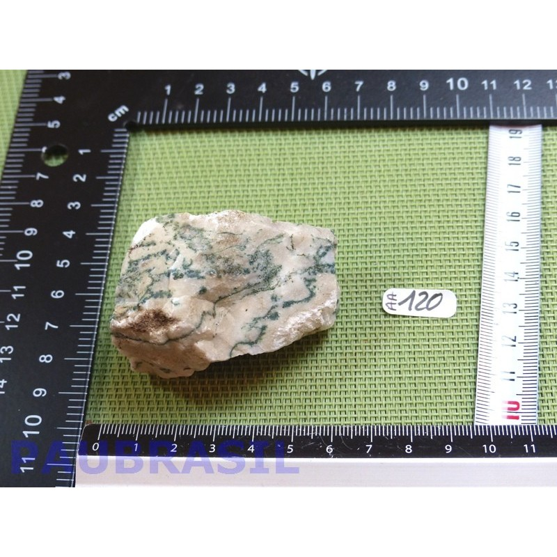 AGATE ARBORISEE - AGATE ARBRE pierre brute 102gr