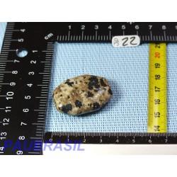 Jaspe Dalmatien Lamparci en mini pierre plate 19gr
