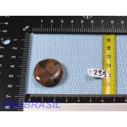 Chiastolite - Andalousite en pierre plate de 10g