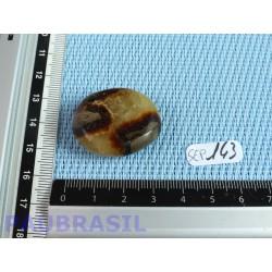 Septaria en tranche polie 15g