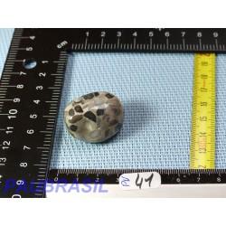 Conglomérat Pudding stone pierre roulée 22g