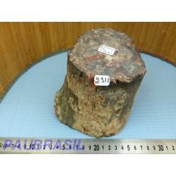 Bois Fossile en tronc une face polie 377gr Madagascar
